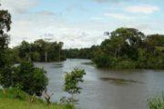 River in the Peruvian Rainforest