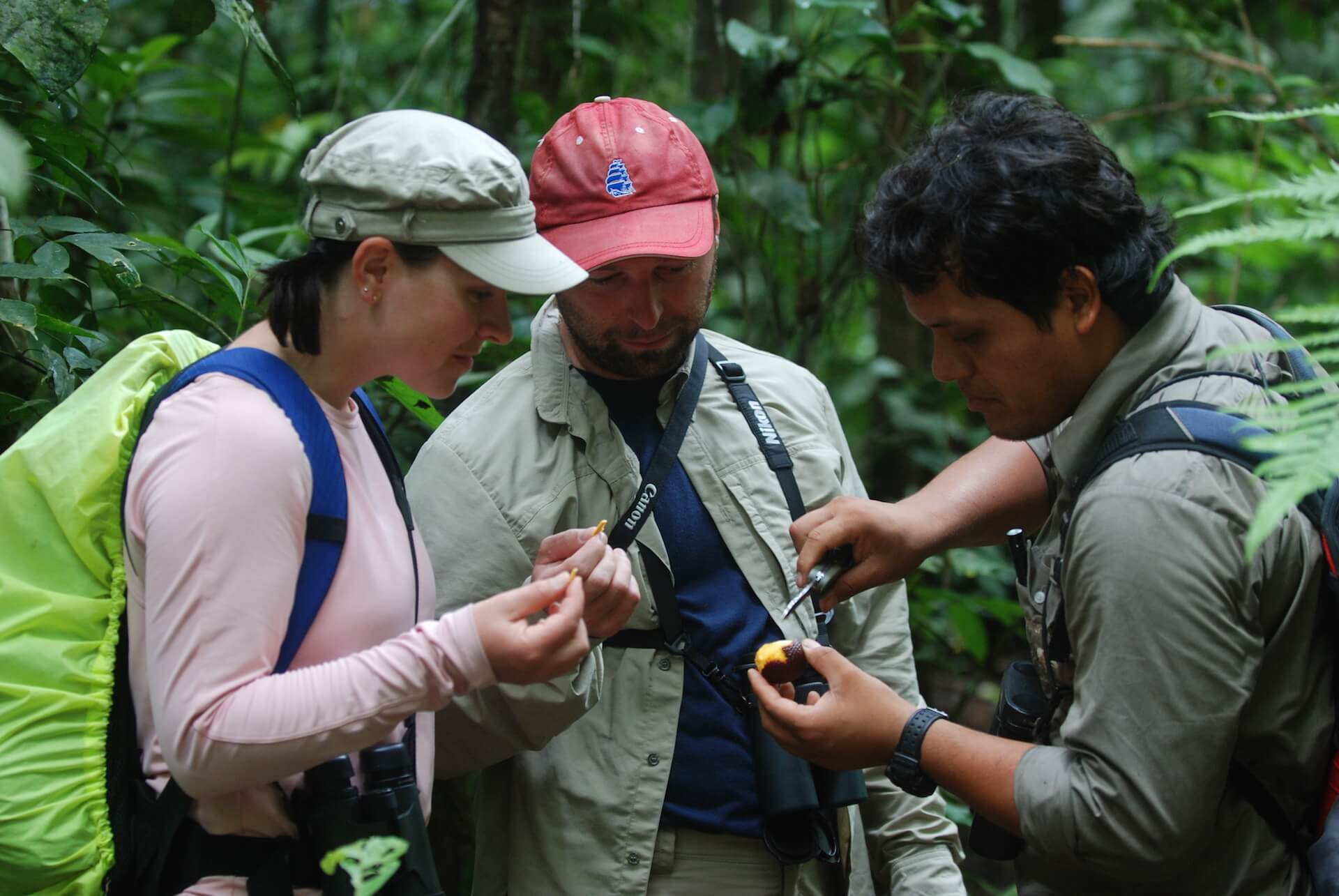 Tour Guide Showing Tourists Fruit from Peruvian Rainforest