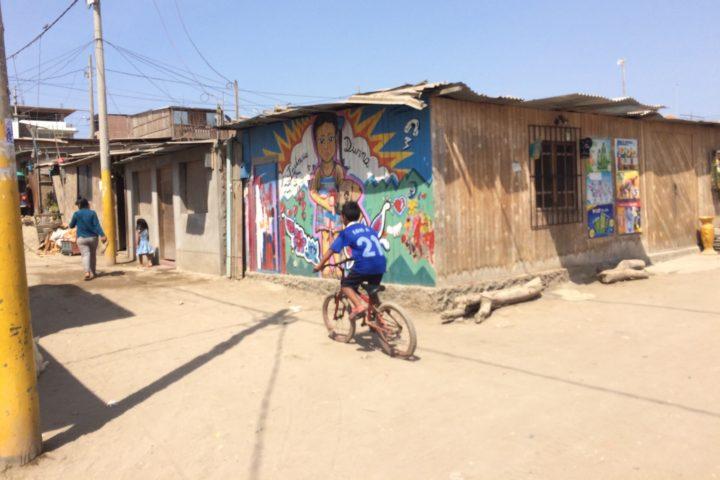 Sustainable Living tour in Villa El Salvador